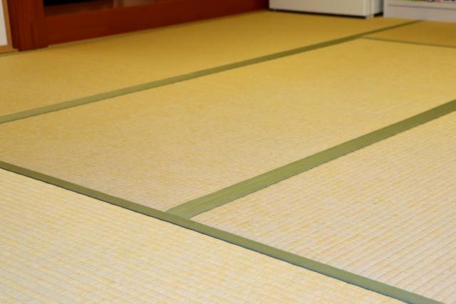 畳 カビ 予防