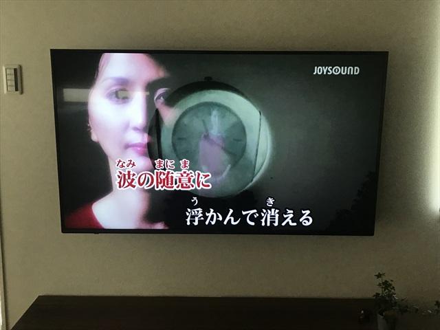 家 カラオケ テレビ